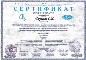 sertif_08